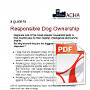 A Responsible Guide to Dog Ownership